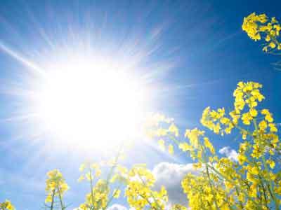 Le retour du soleil, profitez en pour faire le plein de vitamine D
