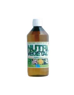 Draineur Nutri Végétal minceur aux plantes