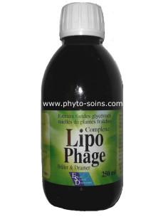 Lipophage bruleur de graisse et cholestérol