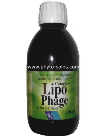 Lipophage préparation minceur aux plantes