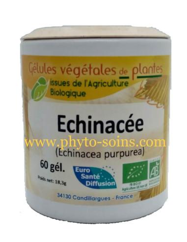 Echinacée pourpre BIO gélules- phytofrance- phyto-soins