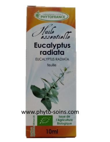 Huile essentielle d'Eucalyptus Radiata ou officinale BIO