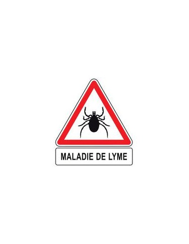maladie de Lyme 3ème période