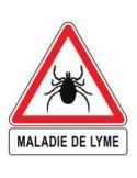 maladie de Lyme 4ème période