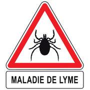 Maladie de Lyme: Traitement Naturel - phyto-soins