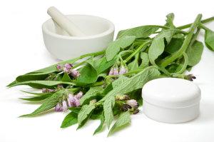 Toutes nos préparations de phytothérapie (plantes médicinales)
